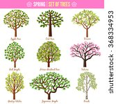 set of spring trees on white... | Shutterstock .eps vector #368334953