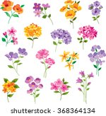 Stock vector colorful hand drawn flowers 368364134