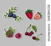 set of stickers with hand drawn ... | Shutterstock .eps vector #368384228