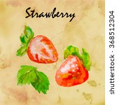 watercolor sprig juicy berries. ... | Shutterstock . vector #368512304