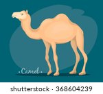 the image of a camel  | Shutterstock .eps vector #368604239
