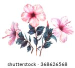 hand drawn  watercolor floral... | Shutterstock . vector #368626568