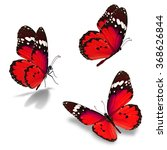 beautiful three red monarch... | Shutterstock . vector #368626844