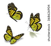 beautiful three yellow monarch... | Shutterstock . vector #368626904