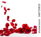 Stock photo red roses and rose petals on white background valentines day concept 368720810
