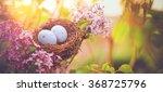 Bird nest in a flowering tree...