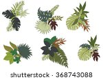 hand drawn tropical leaves... | Shutterstock .eps vector #368743088