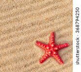 Starfish And Shells On A Sand...