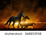 Stock photo dramatic apocalyptic background four running black horses red glowing clouds 368853938
