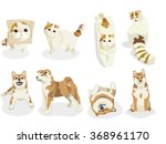 cats and dogs characters.... | Shutterstock .eps vector #368961170