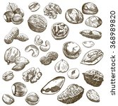 nut set sketches | Shutterstock . vector #368989820