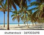 Salalah Coast  Oman  Asia ...