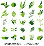 natural icons | Shutterstock .eps vector #369390254