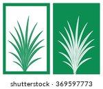 isolated pandan vector...   Shutterstock .eps vector #369597773