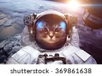 Astronaut Cat In Outer Space...