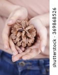 a woman holding a pine cone in... | Shutterstock . vector #369868526