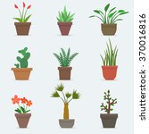 house plants and flowers in... | Shutterstock .eps vector #370016816