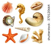 seashells  vector icon set   Shutterstock .eps vector #370120664