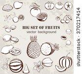 Vector Illustration Of Fruits...