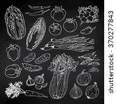 doodle vector illustration of... | Shutterstock .eps vector #370277843
