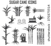 Sugar Cane Icons Vector.