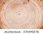 cut down tree circle rings... | Shutterstock . vector #370490378