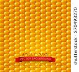 vector background texture ... | Shutterstock .eps vector #370493270