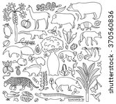 hand drawn south america set.... | Shutterstock .eps vector #370560836