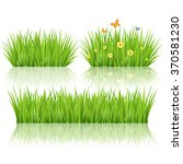 grass set  vector | Shutterstock .eps vector #370581230