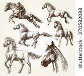 horses. hand drawn set. | Shutterstock .eps vector #370582088