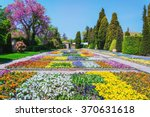 Stock photo lot of different kinds of flowers in the garden 370631618