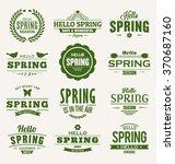 hello spring typographic vector ... | Shutterstock .eps vector #370687160