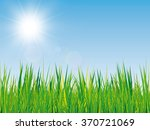 beautiful spring background... | Shutterstock .eps vector #370721069