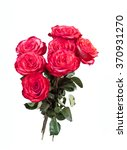 bouquet of red roses on the... | Shutterstock . vector #370931270