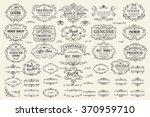 calligraphic design elements .... | Shutterstock .eps vector #370959710