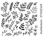 hand drawn set of doodles... | Shutterstock .eps vector #371032169