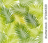 palm leaf silhouettes seamless... | Shutterstock . vector #371064320