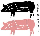 pork meat or pig cuts vector... | Shutterstock .eps vector #371072390