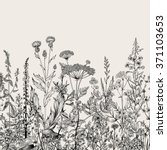 vector seamless floral border.... | Shutterstock .eps vector #371103653