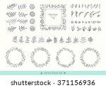 flowers  leaves  frames ... | Shutterstock .eps vector #371156936