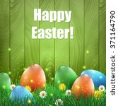 easter eggs and grass with a... | Shutterstock .eps vector #371164790