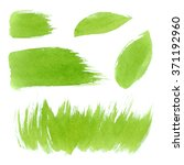 vector green watercolor natural ... | Shutterstock .eps vector #371192960