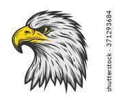 proud eagle's head in profile.... | Shutterstock .eps vector #371293684