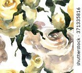 roses. watercolor and ink... | Shutterstock . vector #371335816