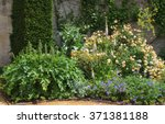 Colourful Flowerbed In A...