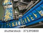 tortellini pasta production... | Shutterstock . vector #371393800