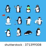 Set Of Animal Penguin Design...
