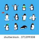 set of animal penguin design...