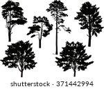 Illustration With Trees Set...