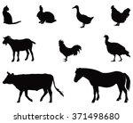vector file of animals... | Shutterstock .eps vector #371498680
